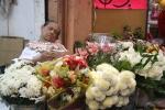 'Flower seller, Merida'